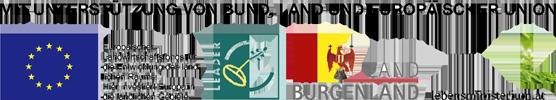 Logo EU_LEADER_transp