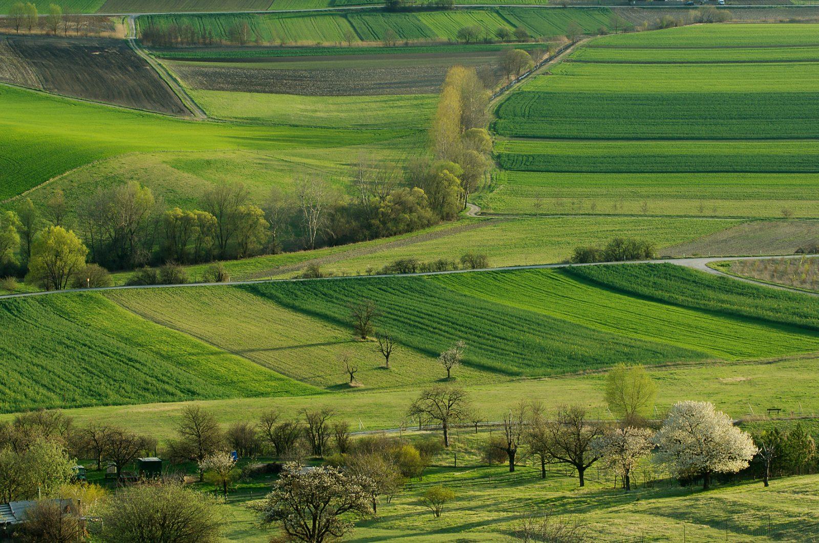 Blick vom Rohrbacher Kogel nach Marz-Rohrbach
