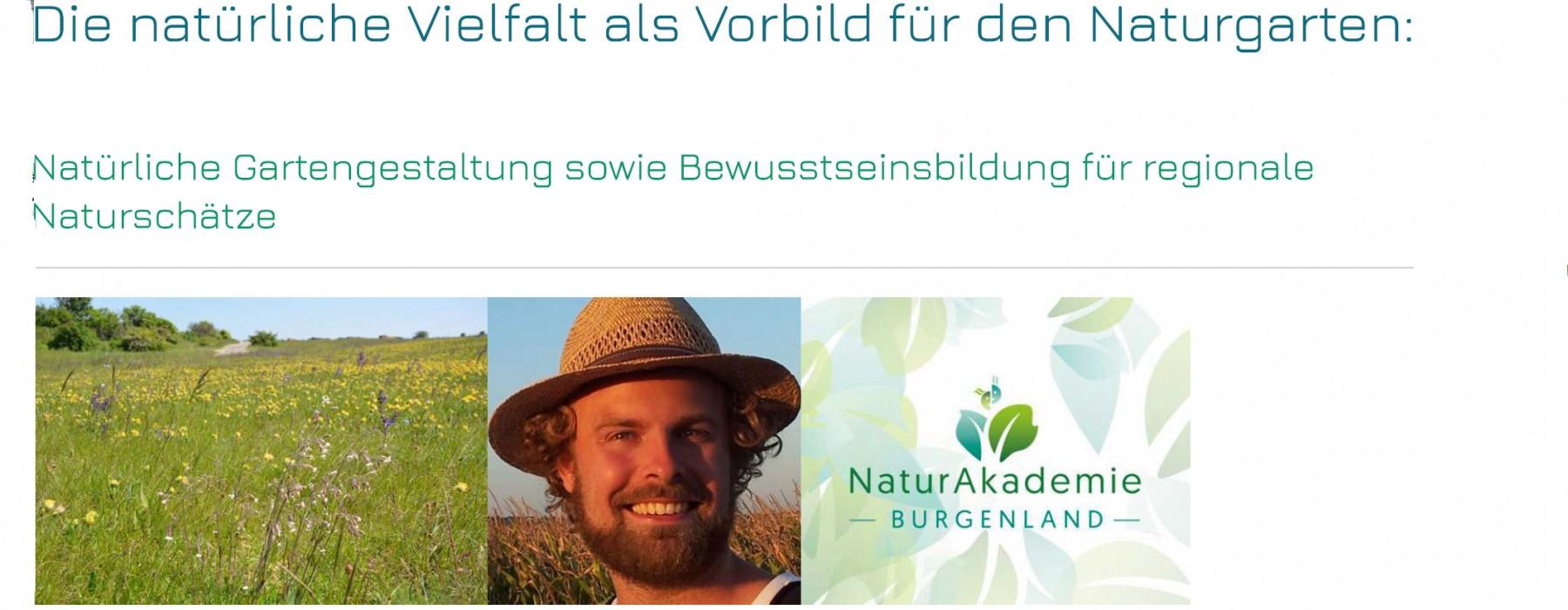 Beitragsbild_Homepage_Naturgarten