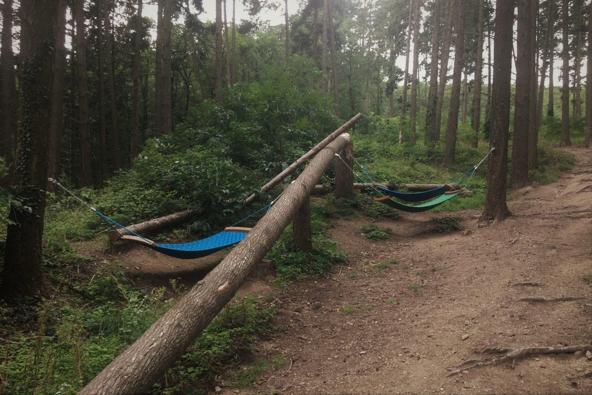 Naturpark Newsletter 08/2021